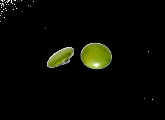 Manouk f174-2 Grass Green Oorbellen