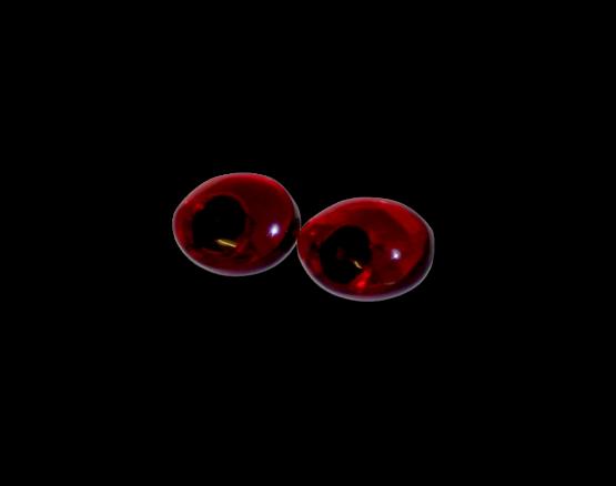 Manouk l177-1 Ruby Drops Oorbellen