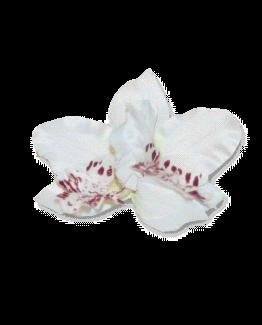 orchidee haarspeld_flower_wit / accessoires / wedding