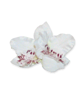 orchidee haarspeld_flower_wit / accessoires / wedding