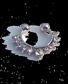 Fake Nose Piercing Diamonds / bijoux / Funny / voordelig